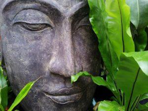 Transzendentale Meditation lernen? (Ratgeber für Anfänger) 2
